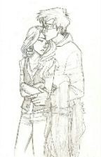 Os Couples [Harry Potter]  by LilyPotter42