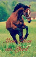 Mein Leben als Pferd by M-lalune