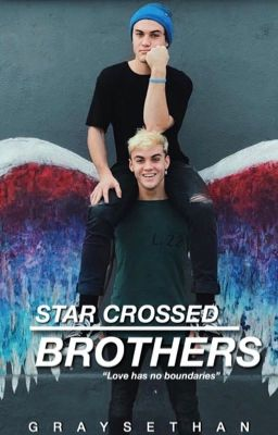 X-rated Gay Brother And Twins