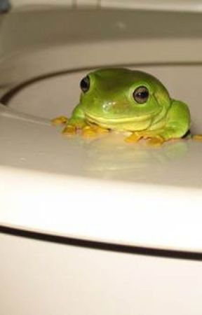 The Tale of the Toilet Frog by MaureenFisher3