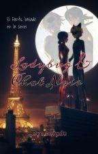 Ladybug y Chat Noir by sfcpfc