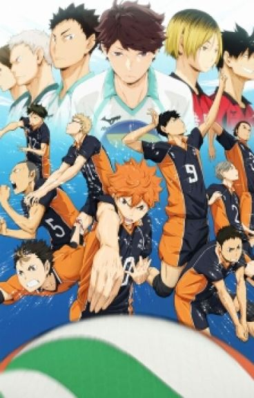 A New Story (Haikyuu X Male Reader)