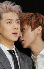 [HunHan] [ShortFic] SeHun, anh chỉ yêu mình em thôi, đừng giận anh nữa ! by Baekie