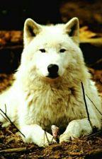 Minha vida como uma loba by Joycielen14