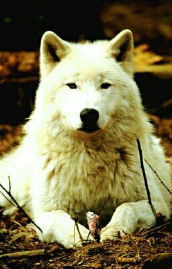 Minha vida como uma loba
