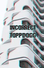 Incorrect ToppDogg by greazypizza