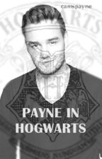 Payne in Hogwarts  by kamterpillar