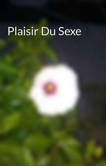 Plaisir Du Sexe