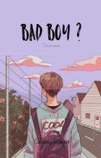 Bad Boy ? || Seventeen by Changbeann