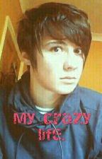My Crazy Life. (DanIsNotOnFire X Reader) by vovo112voleen