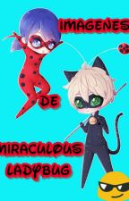 Imágenes de Miraculous Ladybug by ErikaBarcia5