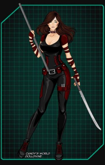 Renegade: robin's sister