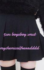 5sos boyxboy smut by Boysstalkboys