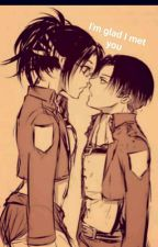 I'm Glad I Met You - LeviHan Love Story  by SashaBrausInTheHouse