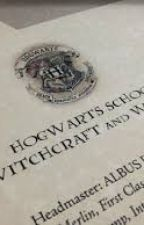 Hogwarts:School of Witchcraft and Wizardry  by PurpleLightningZone