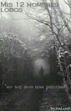 Mis 12 Chicos Lobos. by soelzaid