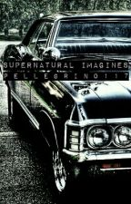 Supernatural Imagines by Pellegrino117