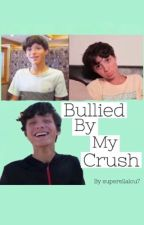 Bullied by my crush  by Plutocchio