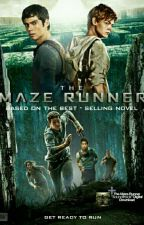 Maze Runner Imagines And Preferences by TheMazeRunnerRP