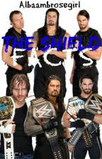 The shield Facts (Completo) by albaambrosegirl