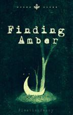 Finding Amber by FleetingFancy