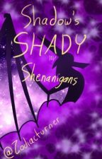 Shadow's Shady Shenanigans (Art Book 4) by Zodiacturner