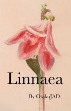 Linnaea  by OtakuJAD