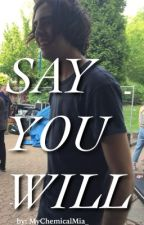 Say You Will (A Jayden Seeley Fanfic) by MyChemicalMia_
