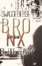 B.R.O.N.X by swaggiebiebsie Slovak translate by GabbieMikaelson
