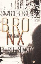 B.R.O.N.X by swaggiebiebsie Slovak translate by GabbieMikaelson