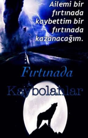 FIRTINADA KAYBOLANLAR( askıda) by Dilaraen132