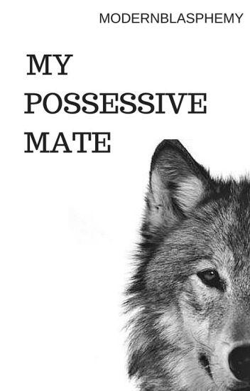 My Possessive Mate