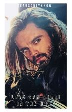 Love Can Start In The Dark (The Winter Soldier/Bucky Bwwm) by bjoiner123