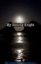 My Shining Knight by professor_peregrine