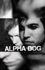 Alpha Dog by xxdarkhorsesxx