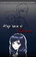 Atajo hacia el amor | Marinette x Adrien x Felix  by MaryAgreste17