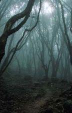 الغابة المرعبة by amona14