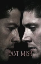 Last wish ~ Destiel AU    { COMPLETED } by leafpawz
