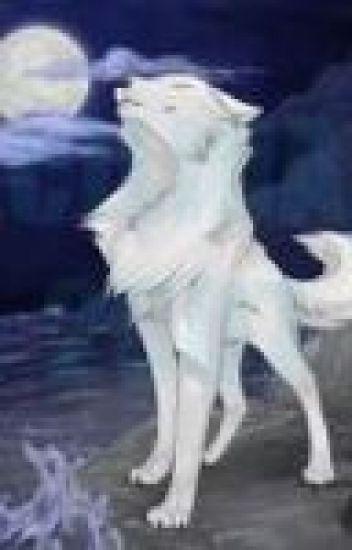 WolfTale (Sans x Wolf reader)