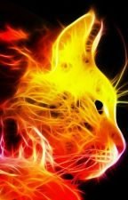 Cat Of Fire by Kaitekano