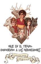Viaje En El Tiempo, Conociendo A Los Merodeadores by _Sea_Dogs_