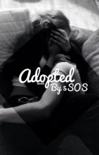 Adopted By 5SOS | ✔️ by abscond-