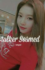 Stalker Sosmed • Joy (SS) by sencpai