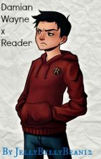 Damian Wayne x Reader by JellyBellyBean12