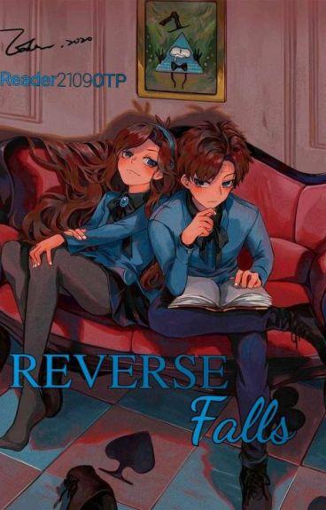 Reverse Falls ©