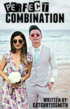 Perfect Combination | VhongAnne by catcurtissmith