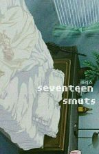 Seventeen Smuts  by jnsslave