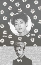 Captivated; HunHan by teaofrevolution