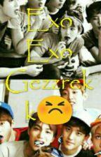 Exo Exo Gezzrekk by T_FF211101