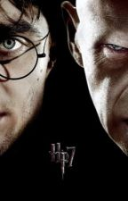 Harry Potter joins Voldemort  by livycipher